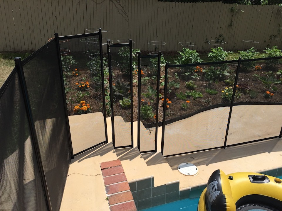 Swimming Daytona Pool Fence